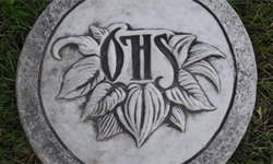 OHS Stepping Stone